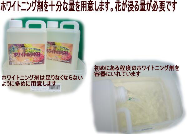 ホワイトニング剤